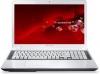 Ноутбук Packard Bell EasyNote LV44-HC-33116G50Mnws