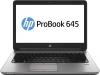 Ноутбук HP ProBook 645 G1 F1N84EA